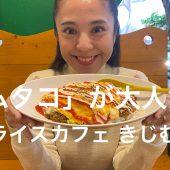 「オムタコ」が大人気のタコライスカフェ きじむなぁ